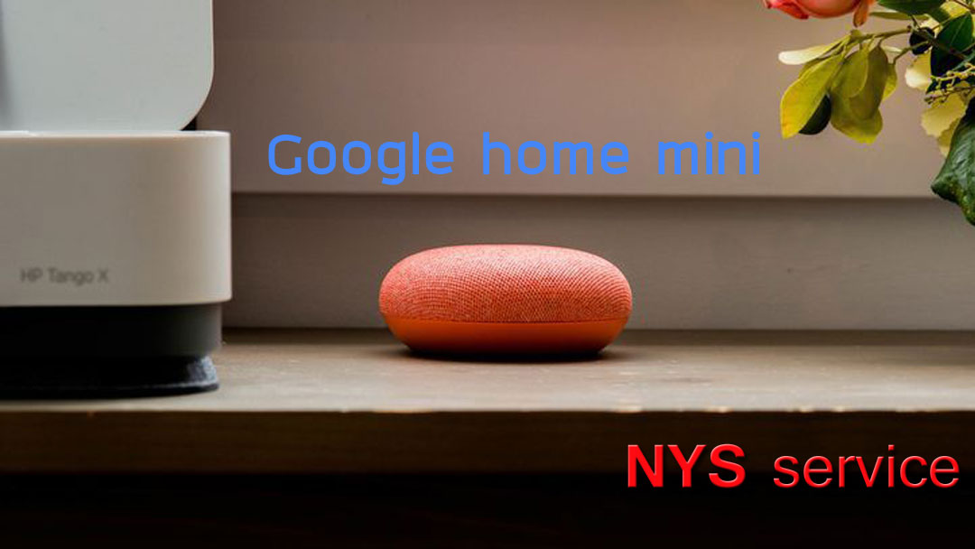 Google home mini #1
